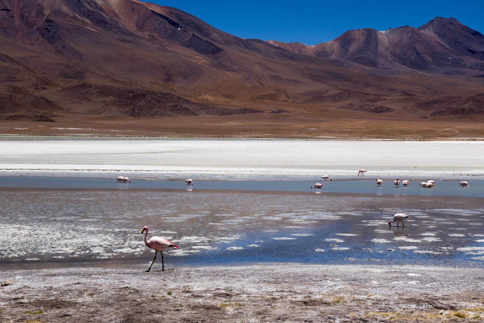 Du Pérou à la Bolivie