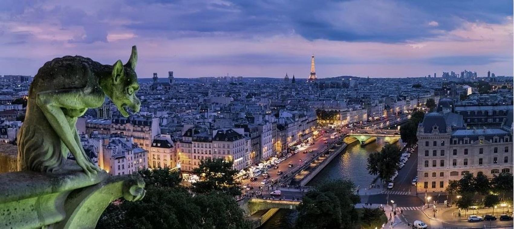 Illuminations de Paris et dîner croisière sur la Seine